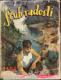 Srub Radosti - román pro chlapce