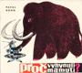 Proč vyhynuli mamuti?